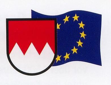 Franken-Euro Fahne