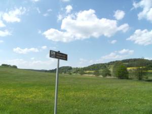Steigerwald 1